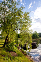 Dock Under the Willow