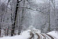 Road to Northport - Winter